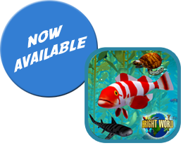 Ocean Forests - Bright World Adventures